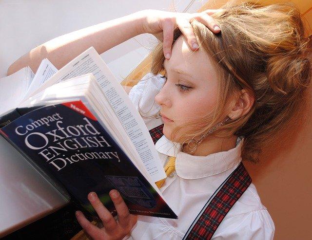 čtení slovníku